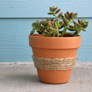 twine-wrapped terracotta pot